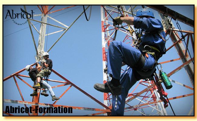 Travail en hauteur tabouret hauteur plan de travail - Formation travail en hauteur port du harnais ...